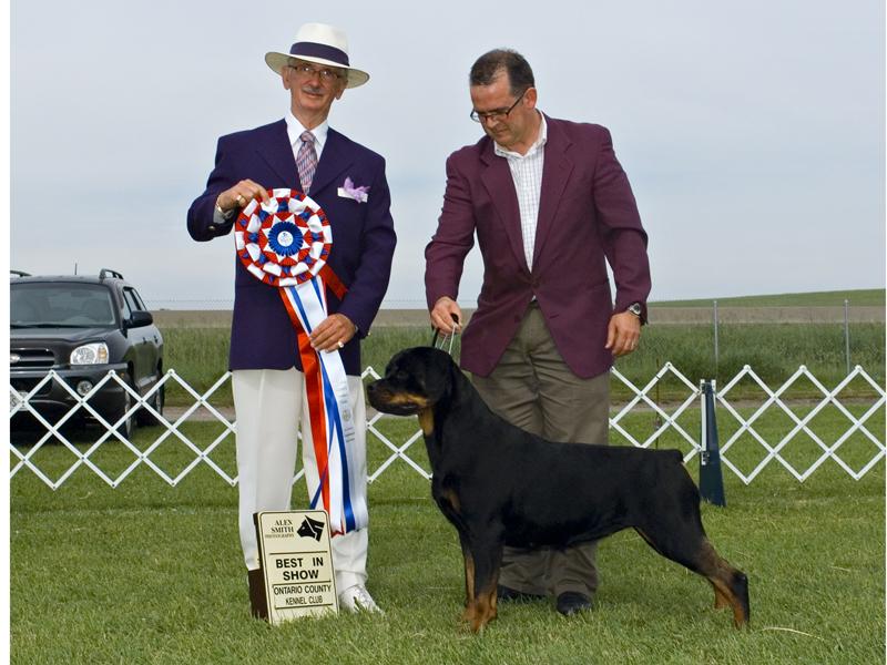 BIS - Day 2, Rottweiler